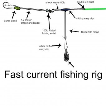 fast current fishing rig diagram , western port rig, gummy shark rig, fast current rig for snapper