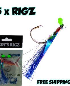 SNAPPER RIG, FISHING RIGS FOR SNAPPER , BESTSNAPPER RIG