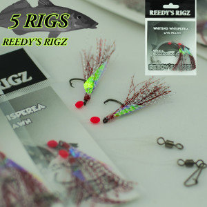 flasher rig , whiting rigs