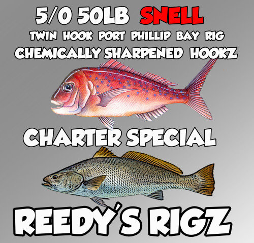 Snapper Charter Melbourne Special , snapper charter , fishing rig ,