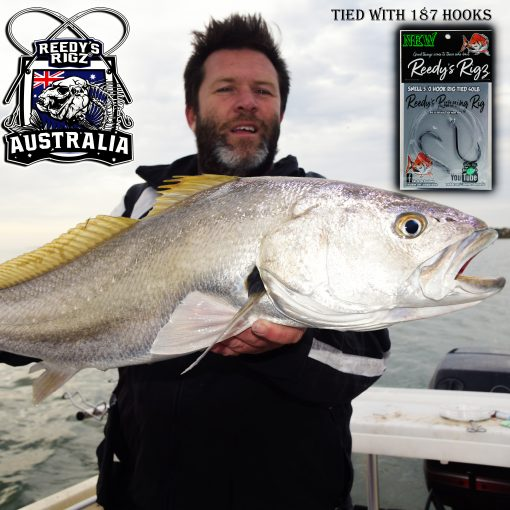 mulloway rig , kingfish rig pre tied paternoster rig, ultra rig snapper , reedys rigs, fishing