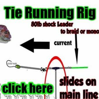 tie running rig, tie fishing rig, tie snapper rig