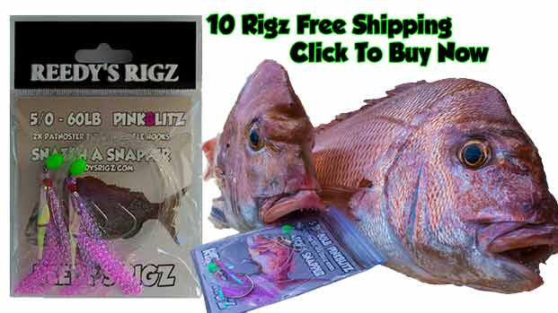 tie snapper rig, fishing rig, pre made rigs, How to Rig Snapper , Mulloway , Kingfish