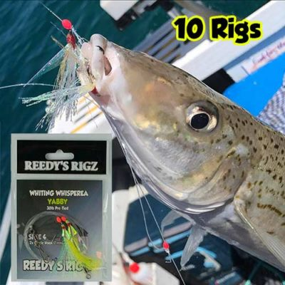 whiting rig pre made, whiting fishing, kg whiting rig,