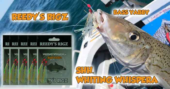 whiting rigs, pump bass yabby , reedy's rigz