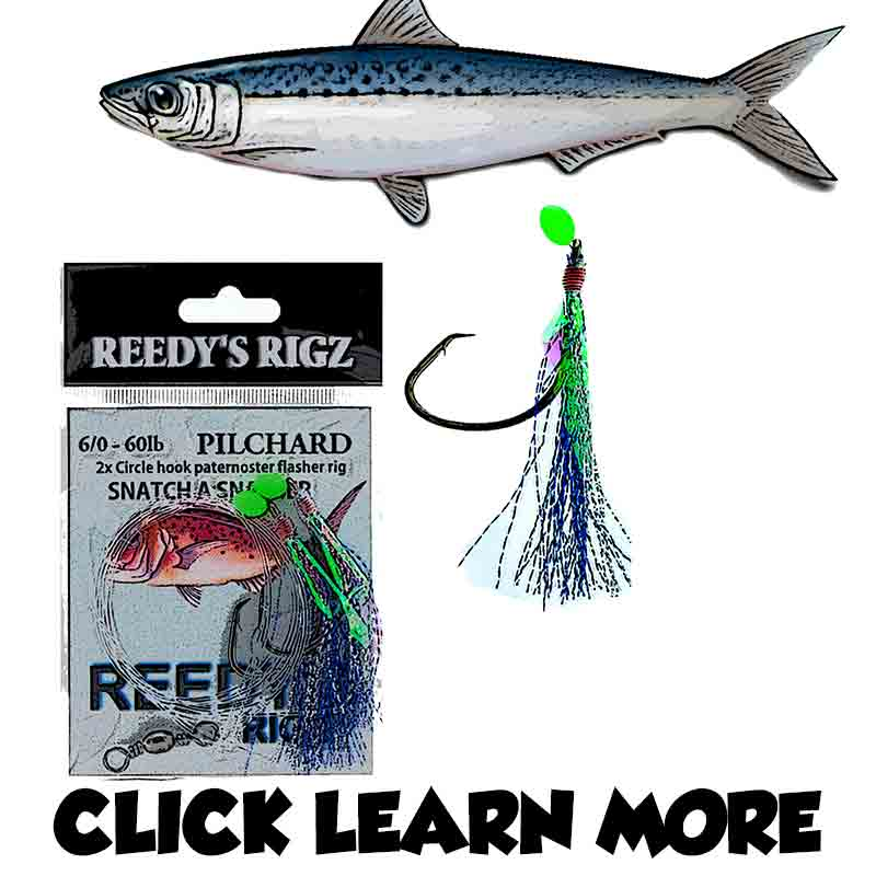 Port Phillip Bay Snapper Best Rig , Fishing Port Phillip Bay Rig