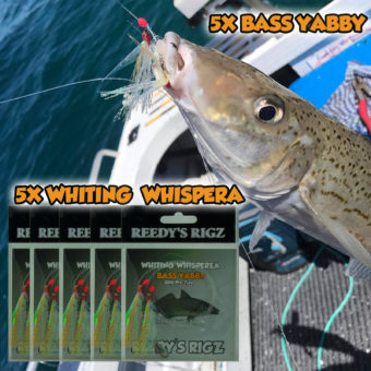 Western Port Whiting Rigs, whiting rig ,