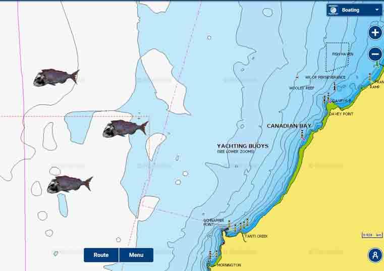 Melbourne snapper report December 2017, snapper fishing report, fishing report, south Australia snapper report