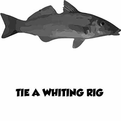 whiting rig, k.g whiting rig, fishing rig, tie