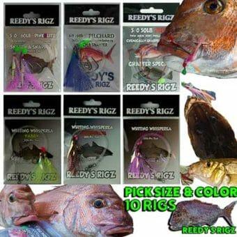 snapper fishing, 4/0 hook,snapper snatcher,snapper snatcher rig,fishing rig, whiting,fishing,