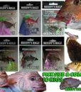 Fishing Pre Made Rigs Snapper & Whiting Snatcher Video Reedy's Tackle
