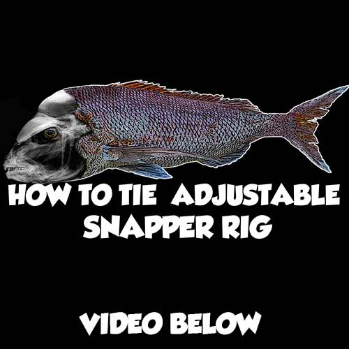 adjustable snapper rig rig, tying fishing rig, adjustable Snapper Rig Tying tutorial Video , fishing , bait fishing