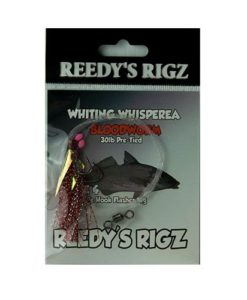 whiting rig, bait bloodworm