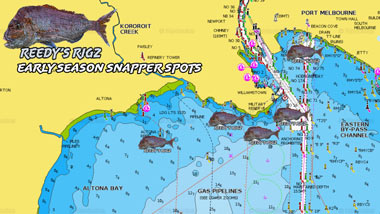 fishing spot, port phillip bay snapper spot melbourne, melbourne snapper, early season snapper spots, gps marks ppb,
