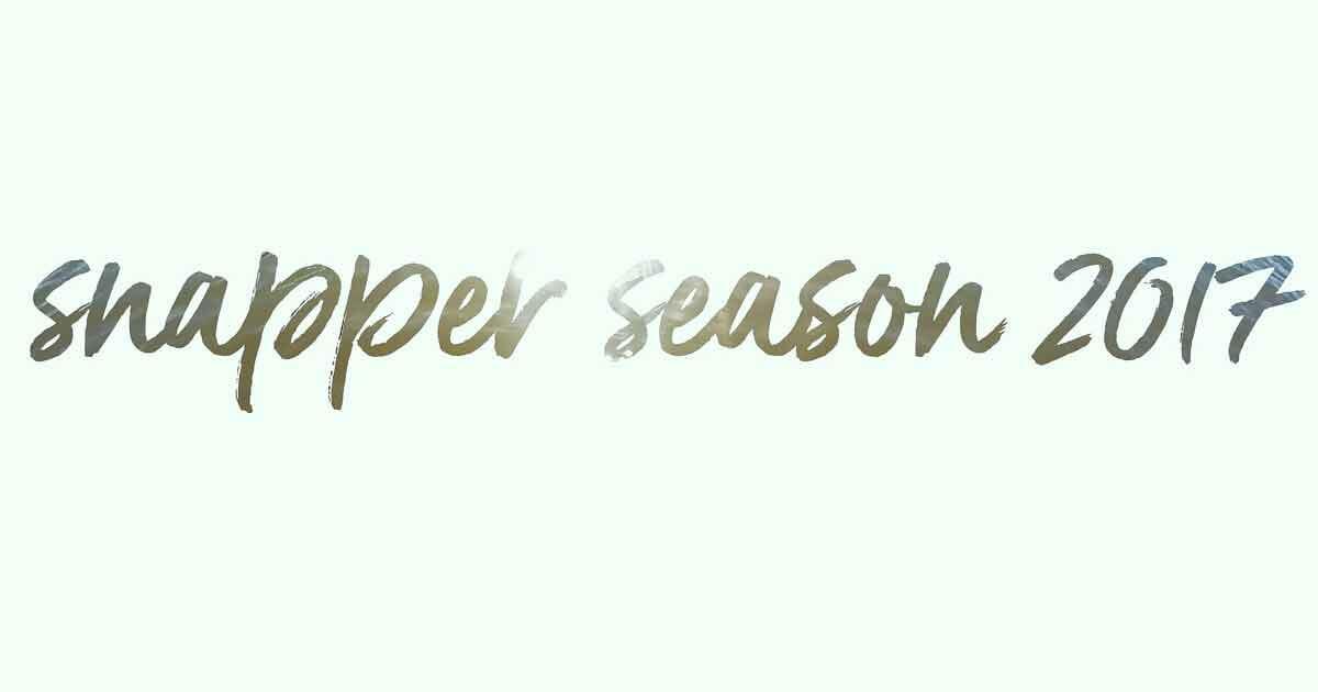 Snapper season 2017