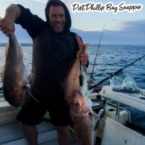 how to catch a port phillip bay snapper