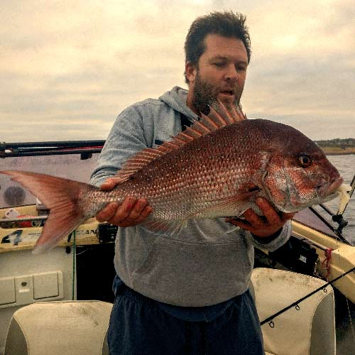 south australian snapper, fishing , snapper , melbourne snapper ,