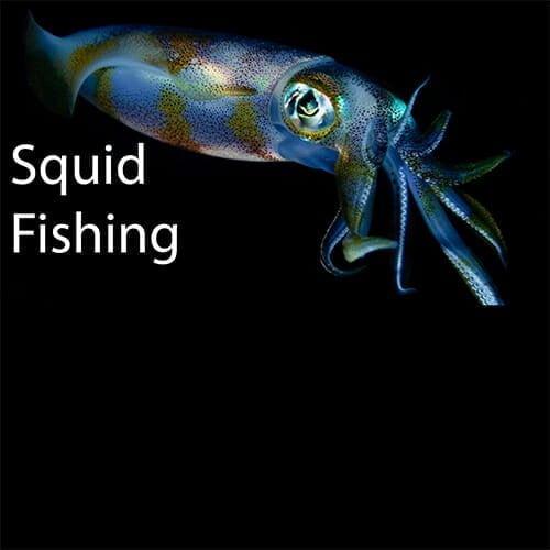 how to catch squid 101 , squid fishing