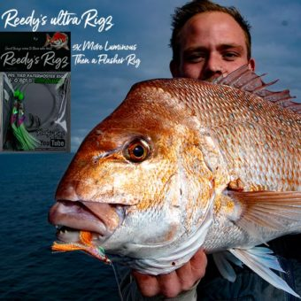 reedys ultra rigs , paternosteer rig , flasher rig , snapper season, Victoria