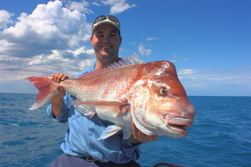 Fisherman, and Red Snapper Australia