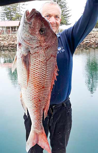snapper , south australia snapper, 10kg snapper, ultra rig, reedys rigz