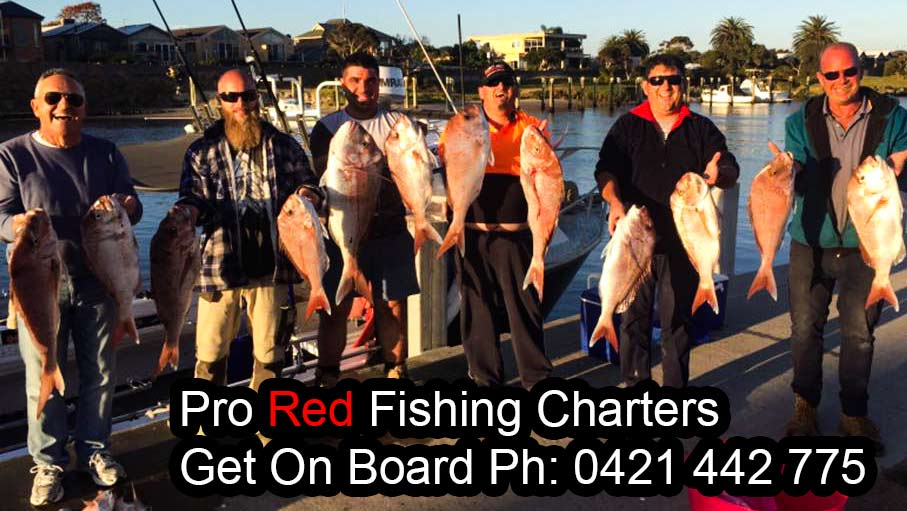pro red fishing charters, jayson turner , melbourne snapper, snapper charter melbourne