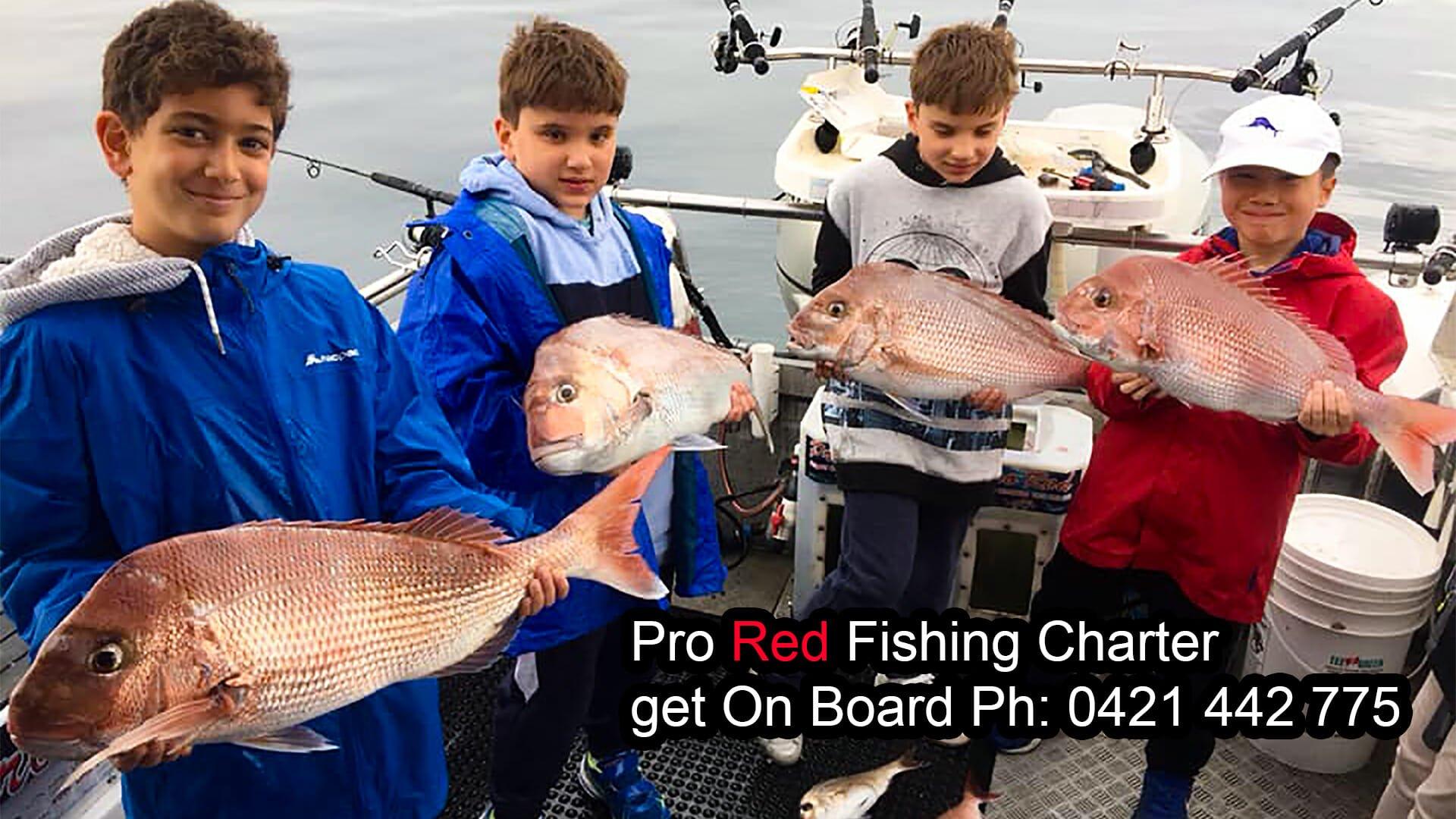 snapper fishing, port phillip bay, prored fishing charters , snapper charters melbourne, fishing melbourne, fishing charter western port, fishing charter port phillip bay