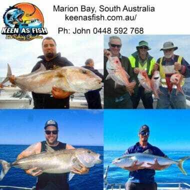 snapper charter south australia