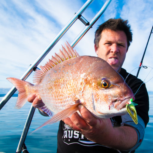 new south wales snapper, sydney snapper , nsw snapper, off shore snapper , coffs harbour snapper, snapper fishing sydney