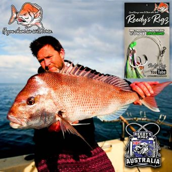 winter snapper, brisbane snapper, perth snapper,fishing rig, snapper rig,
