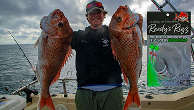 snapper rig, fishing rig, winter snapper , queensland snapper, burley heads snapper, fishing , paternoster rig