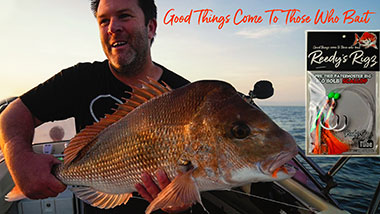 snapper rig , reedys rigs, ultra rig , fishing tackle , paternoster rig, winter snapper , tackle,
