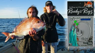 snapper rig , reedys rigs, ultra rig , fishing tackle , paternoster rig, winter snapper , tackle, queensland snapper,adelaide snapper,melbourne snapper,perth snapper
