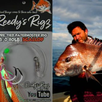 pretied snapper rig, fishing rig,reedys rigs,fishing rig,best tied fishing rig