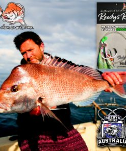 snapper fishing , snapper perth, snapper brisbane, snapper adeliade , snapper south australia , snapper melbourne