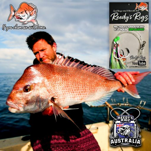 snapper fishing , snapper perth, snapper brisbane, snapper adeliade , snapper south australia , snapper melbourne