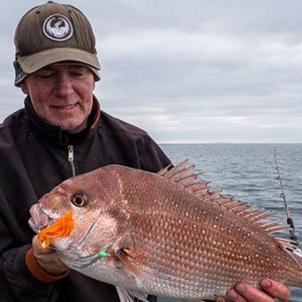melbourne snapper, winter snapper, fishing report port phillip bay,melbourne snapper report,