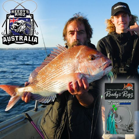 paternoster rig, ultra rig snapper , reedys rigs, fishing, early season snapper