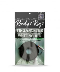 whiting rig, pipi, cockle