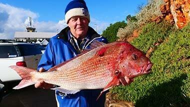 fishing report may , port phillip bay report , may fishing report